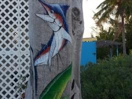 Cape Santa Marta-Hawks Nest-Cat Island