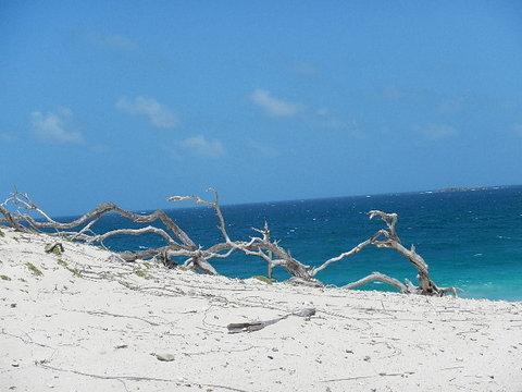 4-dunes-on-p-tamarindo